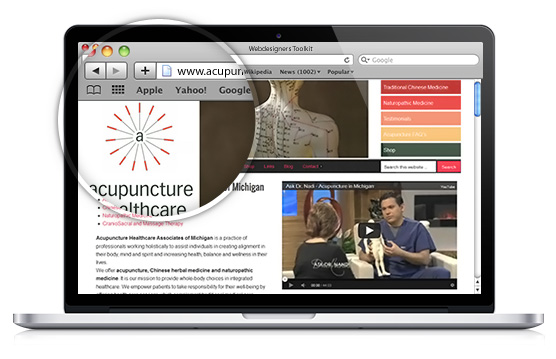 Acupuncture Healthcare Associates of Michigan