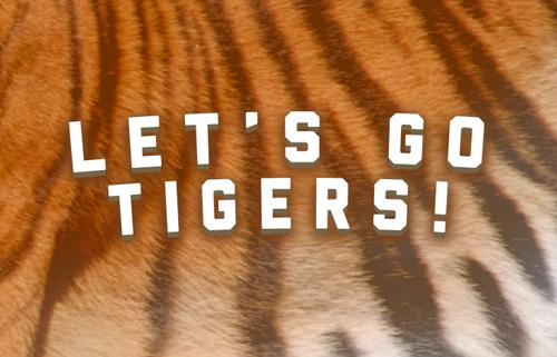 OMA-Tigers